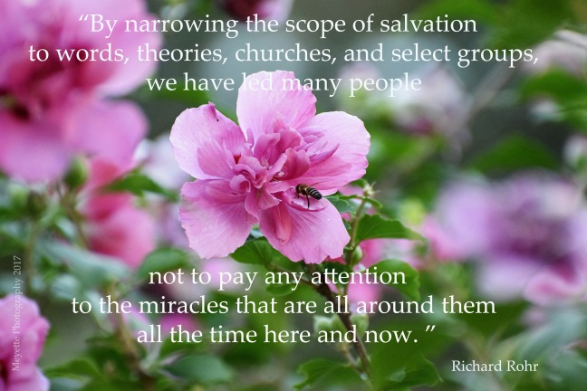 Richard Rohr - 06022017