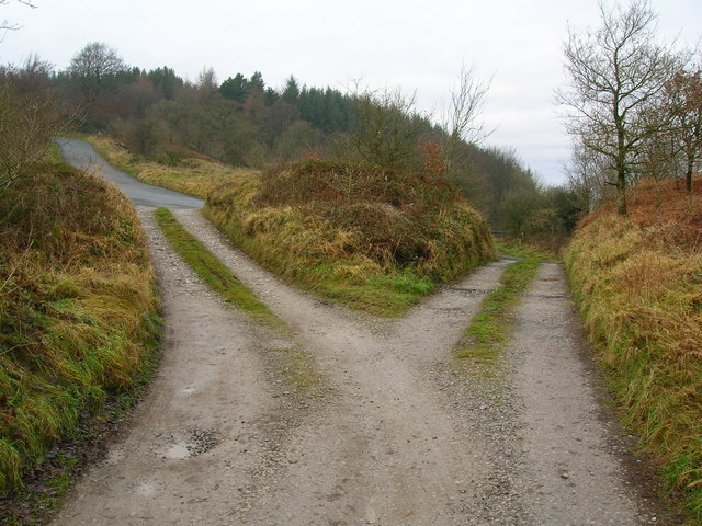which_way_to_go5e_-_geograph-org-uk_-_1090264