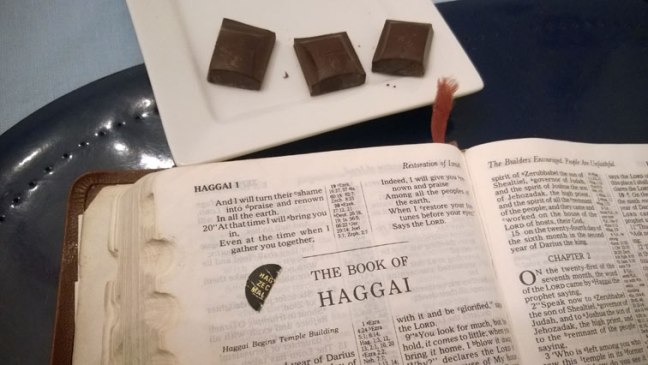 Haggai 1 Bible with Endangered Species Dark Chocolate with Forest Mint